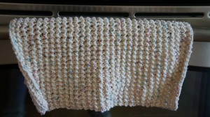 Dish Cloth - rice stitch